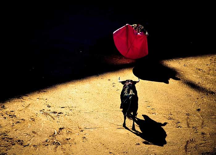 Los Toros son tradición en España